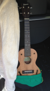 The Ukulele is on the way to the beach!