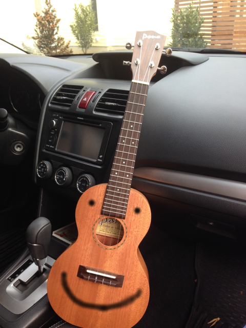 The Ukulele doesn't mind singing in the car when the radio doesn't work. And even when it does, the ukulele still don't mind singing.