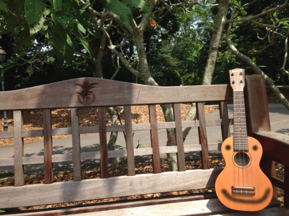 Now the ukulele is relaxing on a nice park bench. (In the botanical gardens in Singapore).